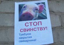 Стоп свинству