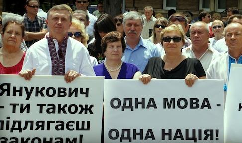 Фото www.vidia.org