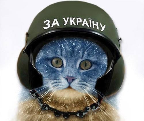 Дефицит платежного баланса Украины за 2014 год составляет $13,3 млрд, - Нацбанк - Цензор.НЕТ 8118