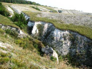 Унікальні крейдяні відслонення Дворічанського національного парку
