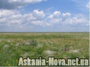 Асканійський степ